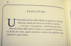 uva y el vino