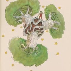 principito baobabs